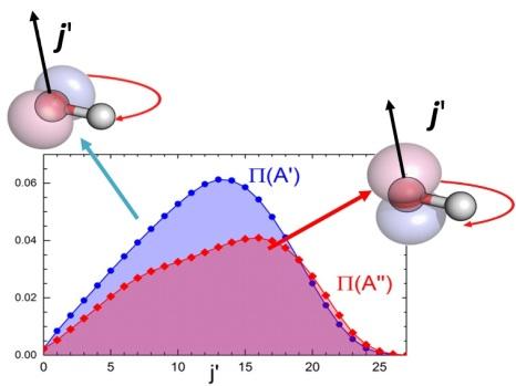 Reactividad frente al nivel rotacional de cada uno de los dos niveles del par de estados del Doblete- Λ. Como puede verse, la reactividad de los estados P(A') [en azul] es considerablemente mayor que la de los estados P(A'') [en rojo]